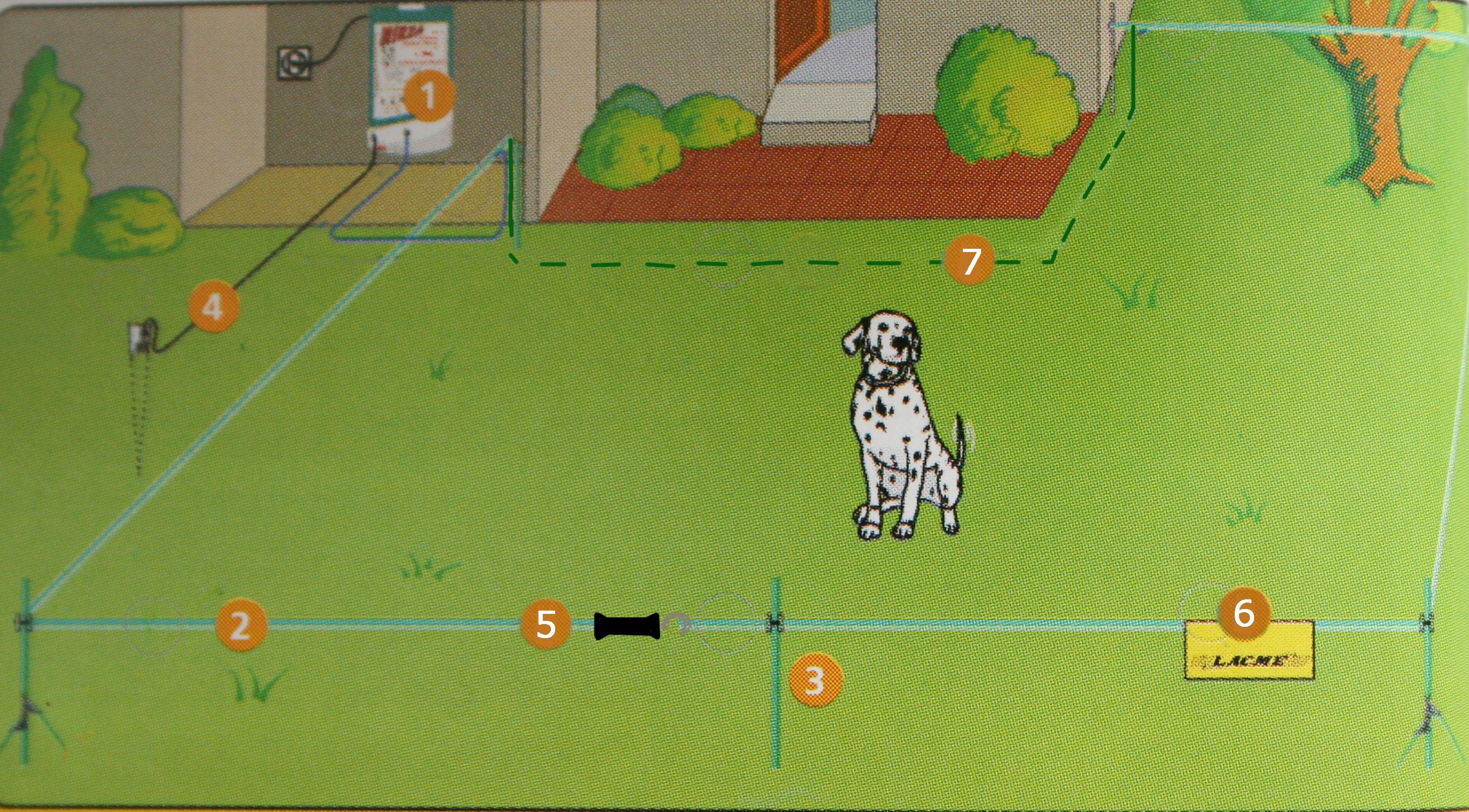 Recinzioni elettriche per cani myselleria blog for Recinzione elettrica per cavalli
